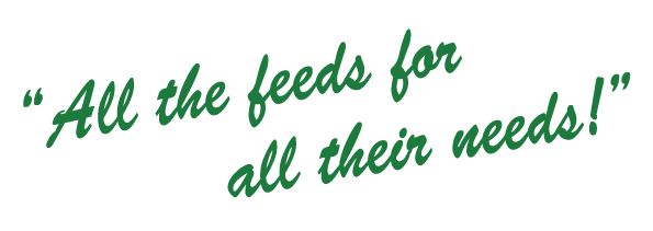 GJL Animal Feeds - All the Feeds for all Their Needs.
